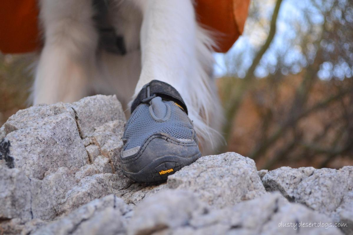Gear Review - Ruffwear Grip Trex Boots