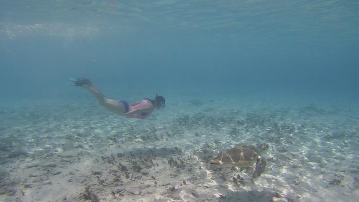 Curacao_8