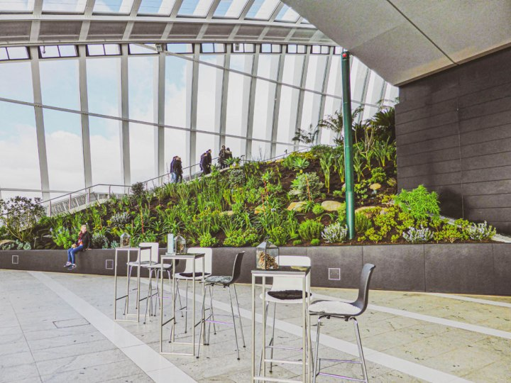 the dome of the Sky Garden Londonbar area in Sky Garden London