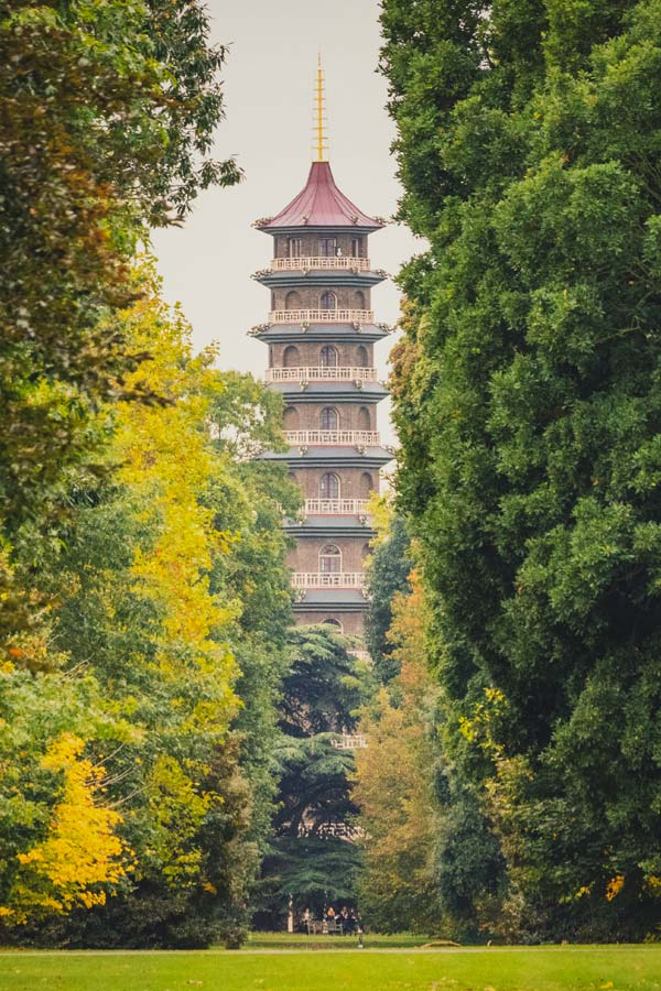 View of the Pagode in Kew Gardens with tall trees in the foreground that have autumn colour leaves