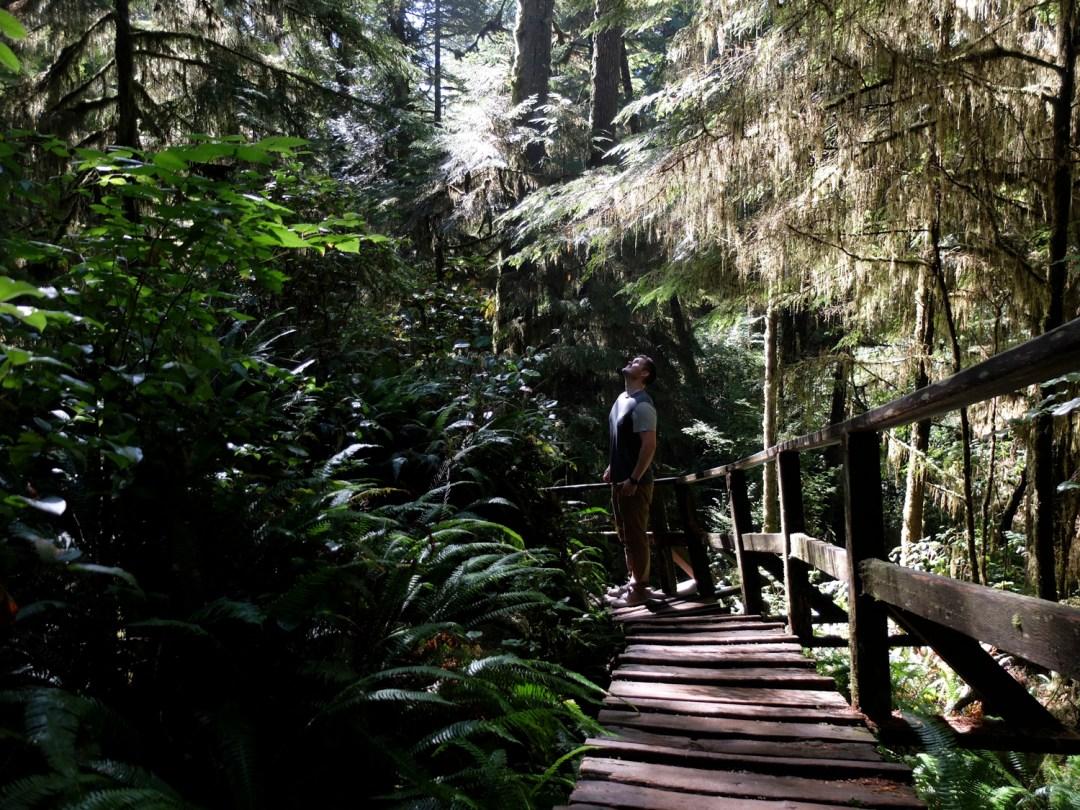 Tofino Rainforest Trail | Dutchie Love