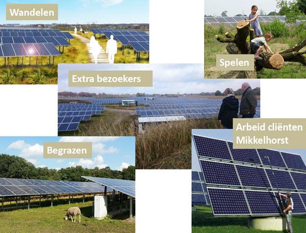 Voordelen voor Zorgboerderij De Mikkelhorst bij realisatie Polycultuur Zonnepark