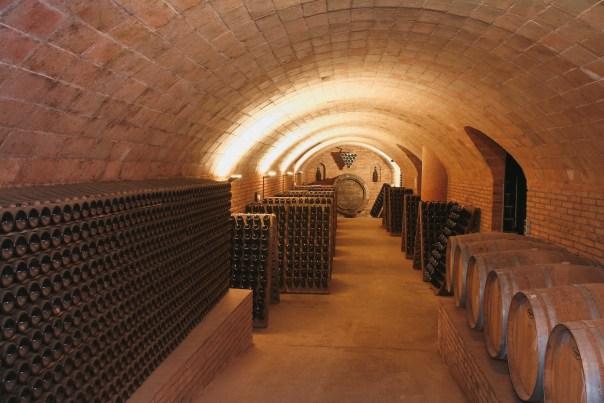 wijnkelder Celler Credo