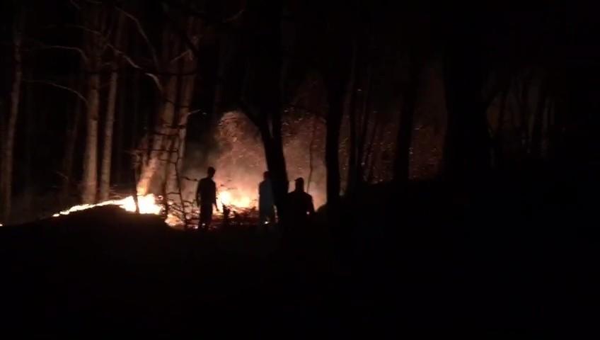 Düzce'deki orman yangını kontrol altına alındı