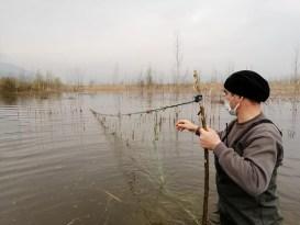 Efteni Gölü'nde 800 metre ağ yakalandı