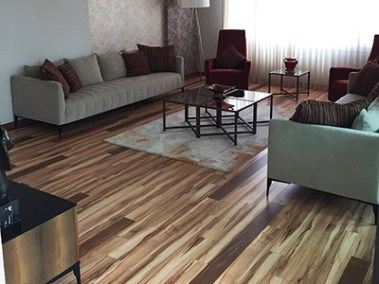 Lounge Plus laminate - Swiss Maple2