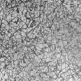 MA36 Neurona Reverse