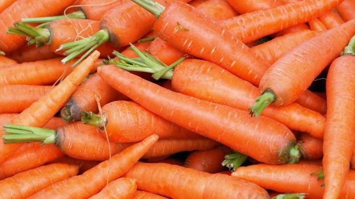 Херсонские фермеры в марте будут собирать первый урожай моркови