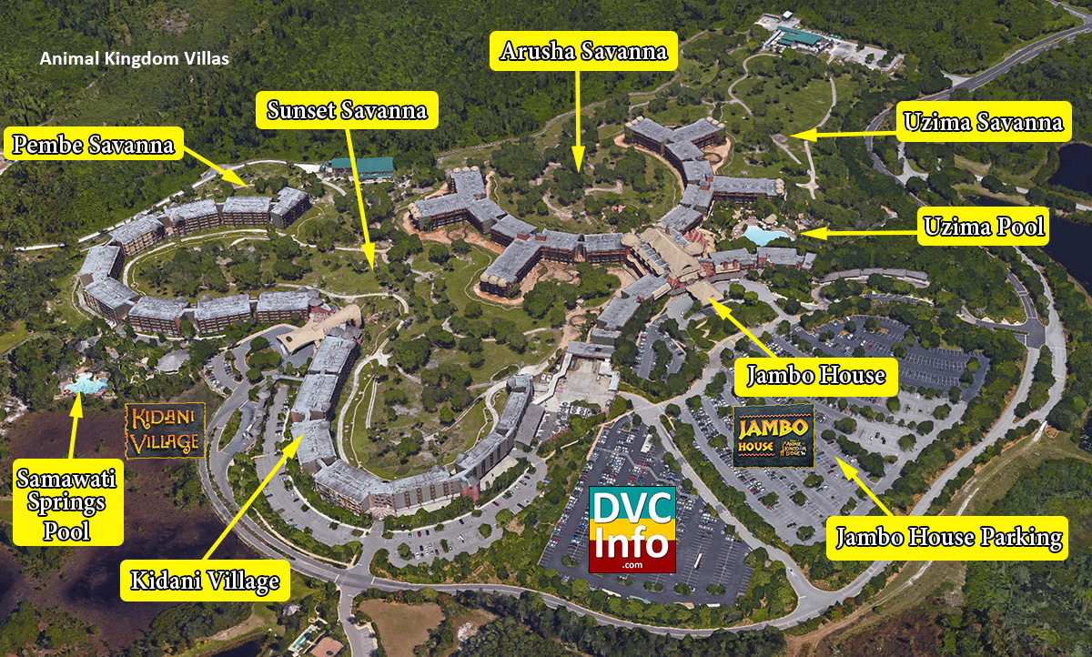 Disney S Animal Kingdom Villas Dvcinfo
