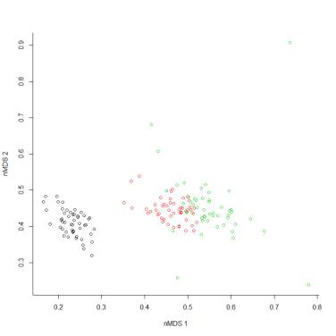 Solução do nMDS com algoritmo genético após 100.000 iterações com stress de 0,33.