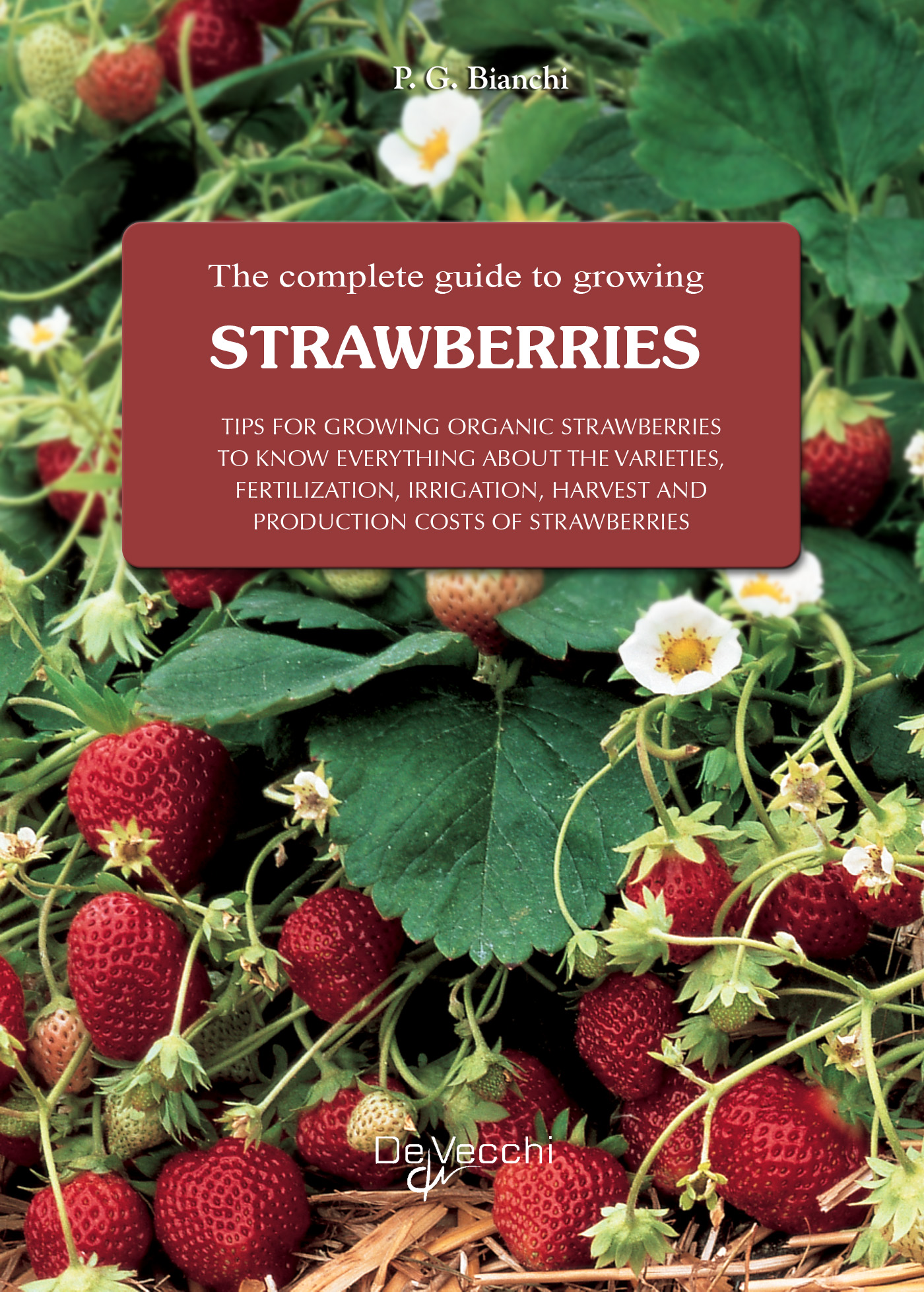 Complete guide to growing strawberries