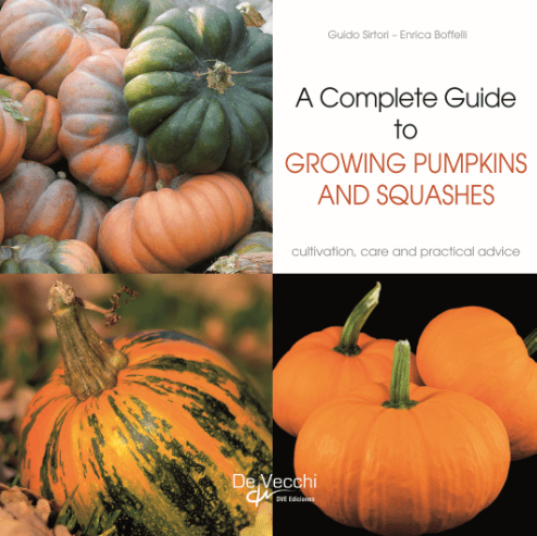 Growing Pumpkins and Squashes