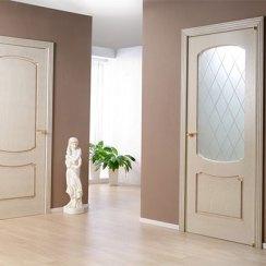 Глухие и остекленные двери