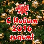 С наступающим Новым 2016 годом
