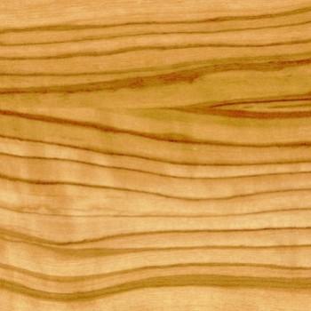 3213/1 Севильская олива светлая