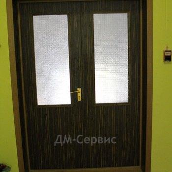 Двухстворчатая пластиковая дверь со стеклом
