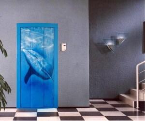 складная дверь с аэрографией