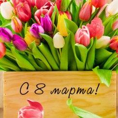 С 8 марта, дорогие женщины