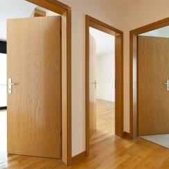 Двери для строителей