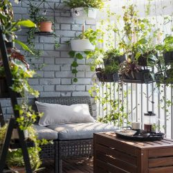 10 Creative Small Garden Ideas For Your Balcony Finder