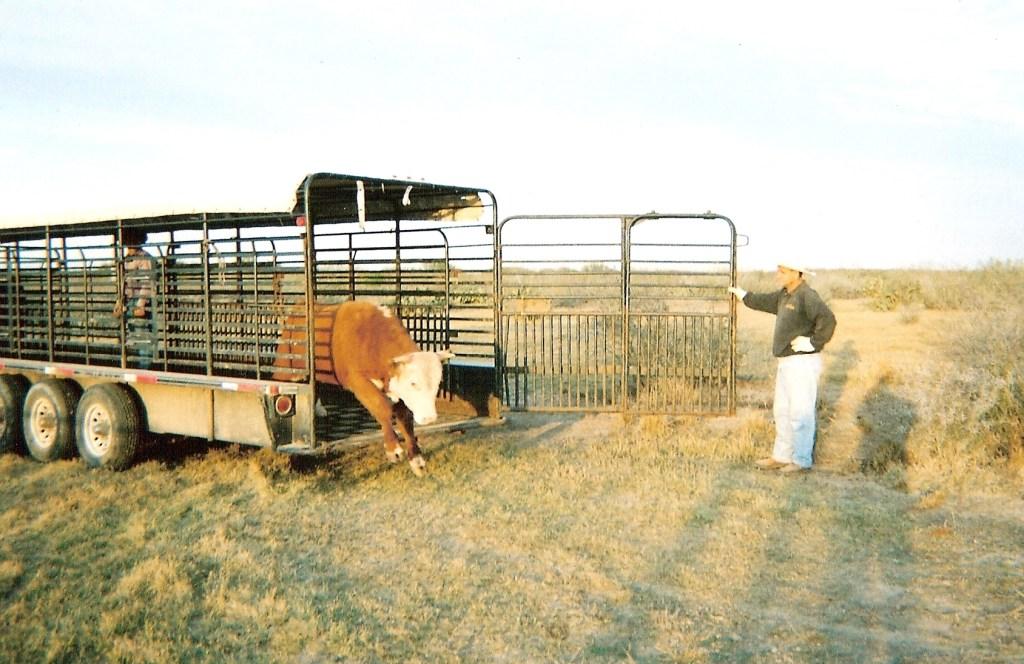 Ranch0006