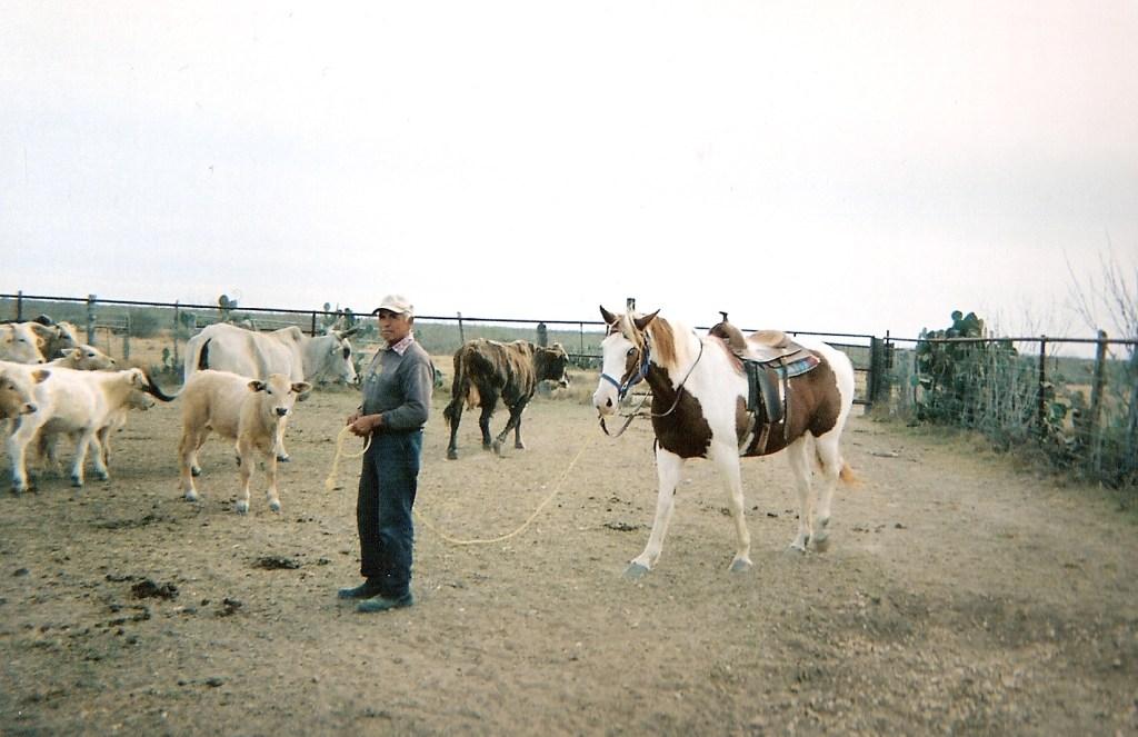 Ranching – 15