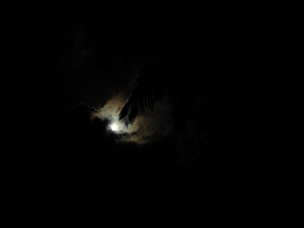 Im ciemniej, tym przyjemniej! / Ngapali, Birma