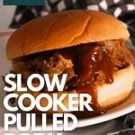 slow cooker pulled pork pinterest