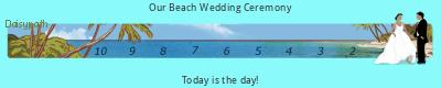 Daisypath Wedding tickers
