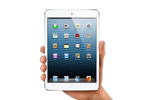 apple ipad mini 300069