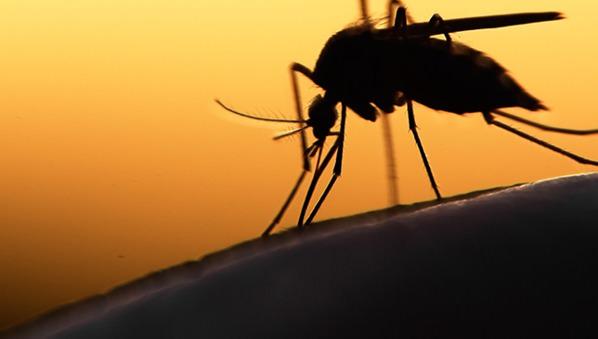 paludisme - Santé : un alcootest pour dépister le paludisme