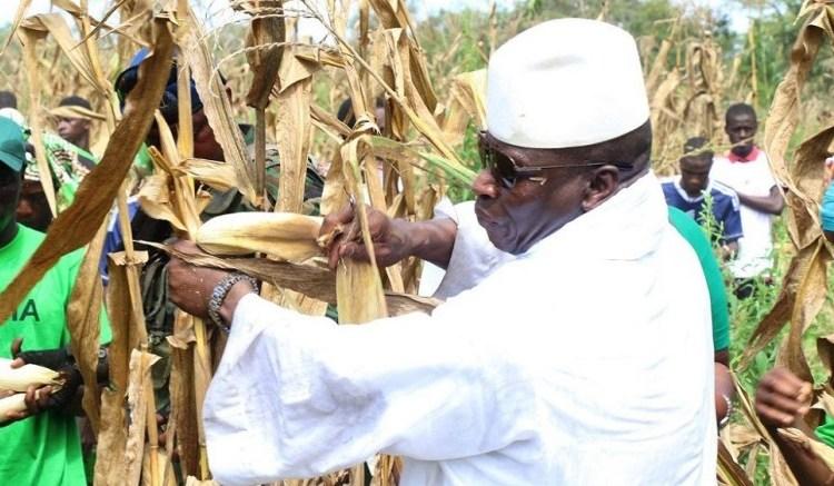 Yahya Jammeh - Guinée équatoriale: Le vice- premier ministre justifie la présence de Yahya Jammeh
