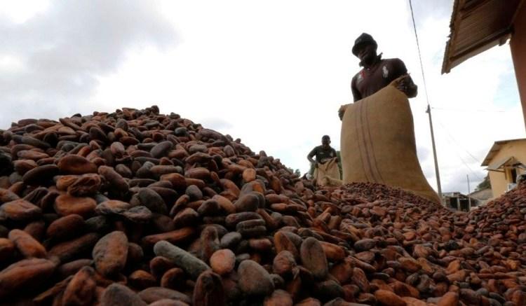 Côte d'ivoire: De nouveaux contrats pour la filière cacao