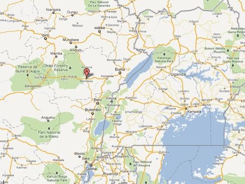 Ituri : 3 nouveaux cas d'Ebola confirmés à Mambasa