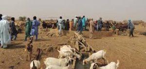 Conflits liés aux ressources naturelles : Lancement du projet de médiation agropastorale au Sahel