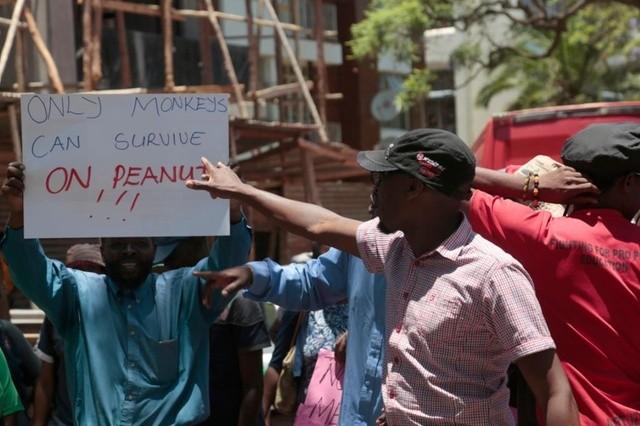 Le Zimbabwe sur le point de subir une famine «créée par l'homme»