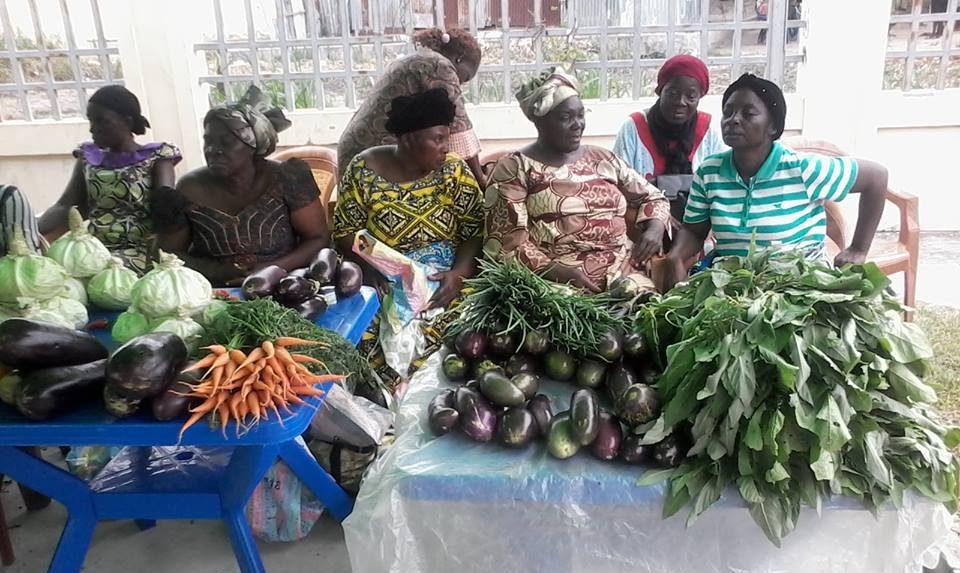 CongoAssociations La Cnop Congo organise un atelier de sensibilisation - Congo/Associations : La Cnop Congo organise un atelier de sensibilisation au profit des producteurs