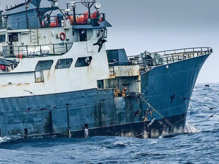 PecheLe Gabon et lUnion europeenne lies par un nouvel accord - Pêche:Le Gabon et l'Union européenne liés par un nouvel accord