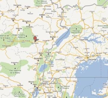 Ituri : les agriculteurs dénoncent la dévastation de leurs champs par les exploitants miniers à Mambasa