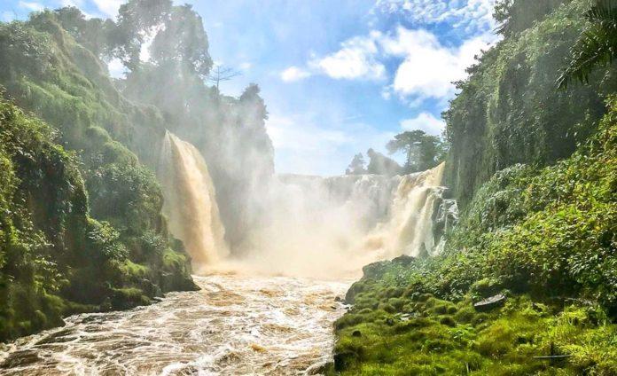 L'inscription par l'Unesco du Parc national de l'Ivindo au patrimoine mondial de l'humanité consacre le rôle majeur du Gabon en matière de lutte contre le réchauffement climatique
