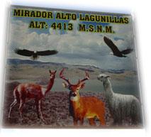 mirador4413