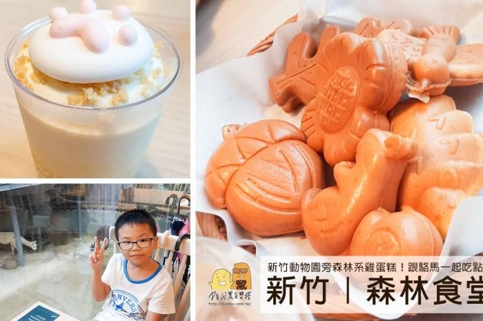 新竹美食推薦!新竹動物園旁的森林食堂、森林野餐,小動物造型雞蛋糕小孩超愛!