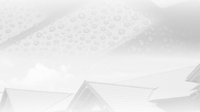 DWZ - Dach und Wand Zeven