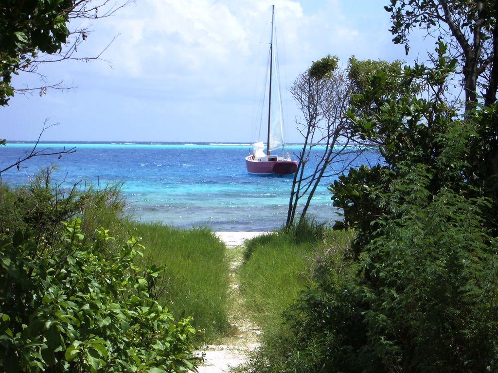 Palm Island Grenadines J88PI