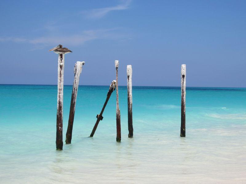 Aruba P4/DL5CW