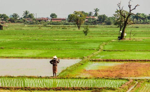 Laos XW7FG DX News