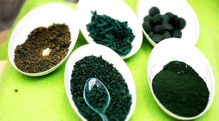 Spirulina alga - de melyik a jó?