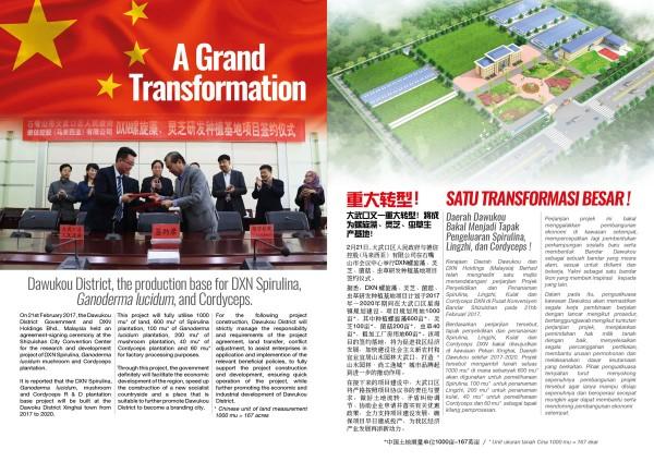 DXN China