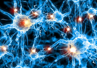 cell-neurons-400px