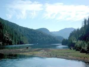 Galliano beaver ponds